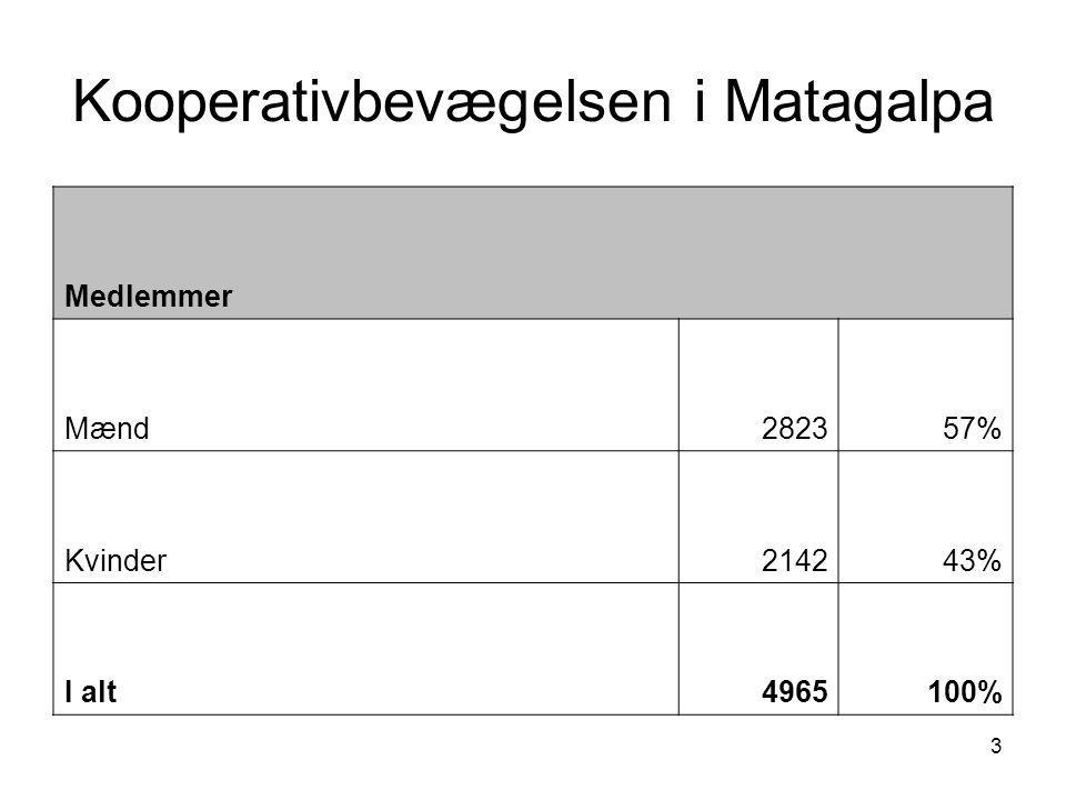 3 Kooperativbevægelsen i Matagalpa Medlemmer Mænd282357% Kvinder214243% I alt4965100%