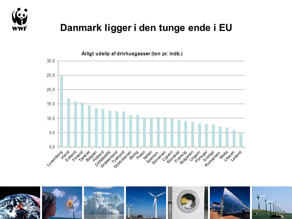Danmark ligger i den tunge ende i EU