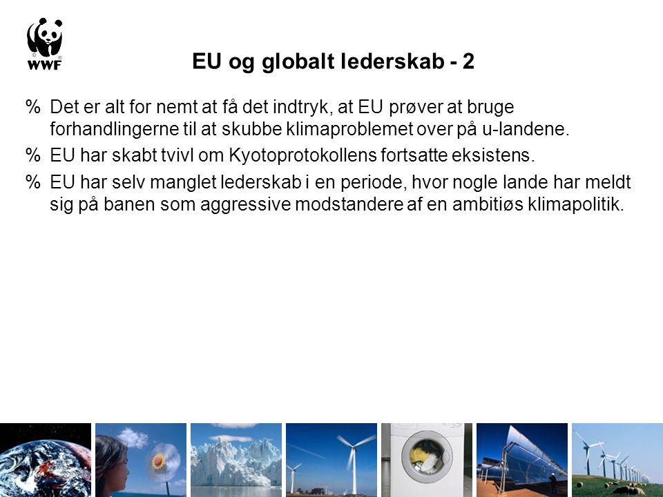 EU og globalt lederskab - 2 %Det er alt for nemt at få det indtryk, at EU prøver at bruge forhandlingerne til at skubbe klimaproblemet over på u-landene.