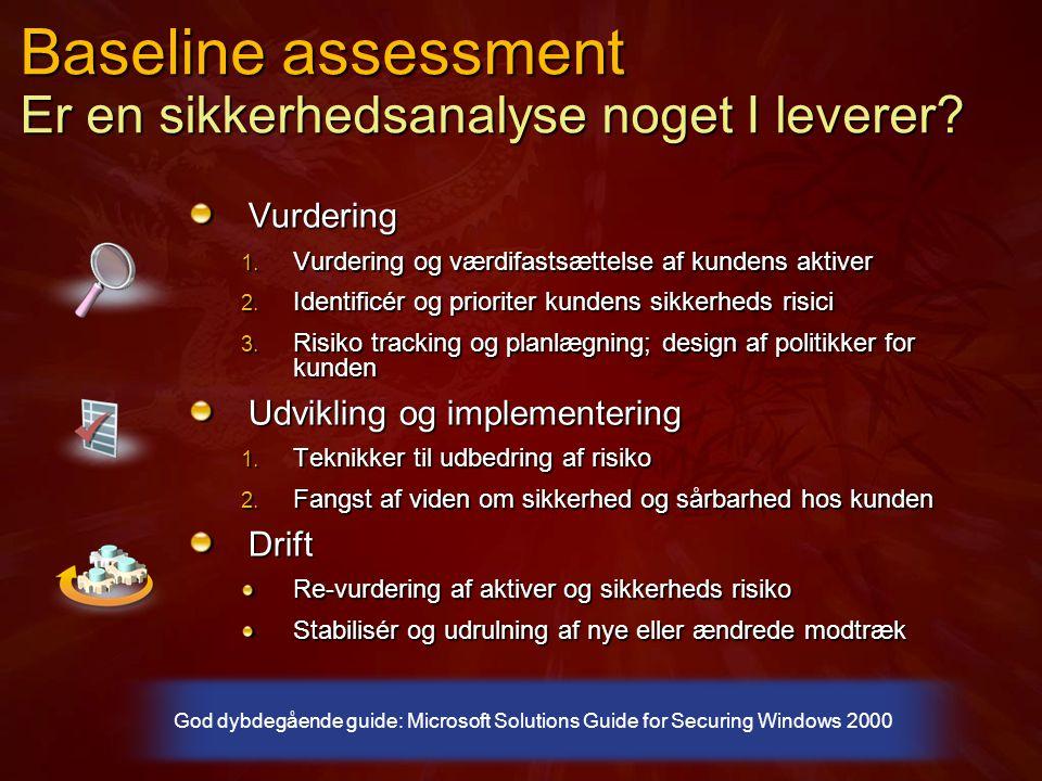 Baseline assessment Er en sikkerhedsanalyse noget I leverer.