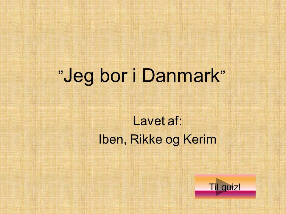 Lavet af: Iben, Rikke og Kerim Jeg bor i Danmark Til quiz!