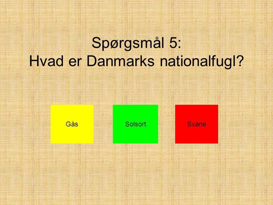 Spørgsmål 5: Hvad er Danmarks nationalfugl GåsSolsortSvane