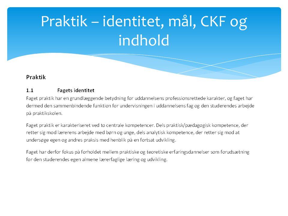 Praktik – identitet, mål, CKF og indhold