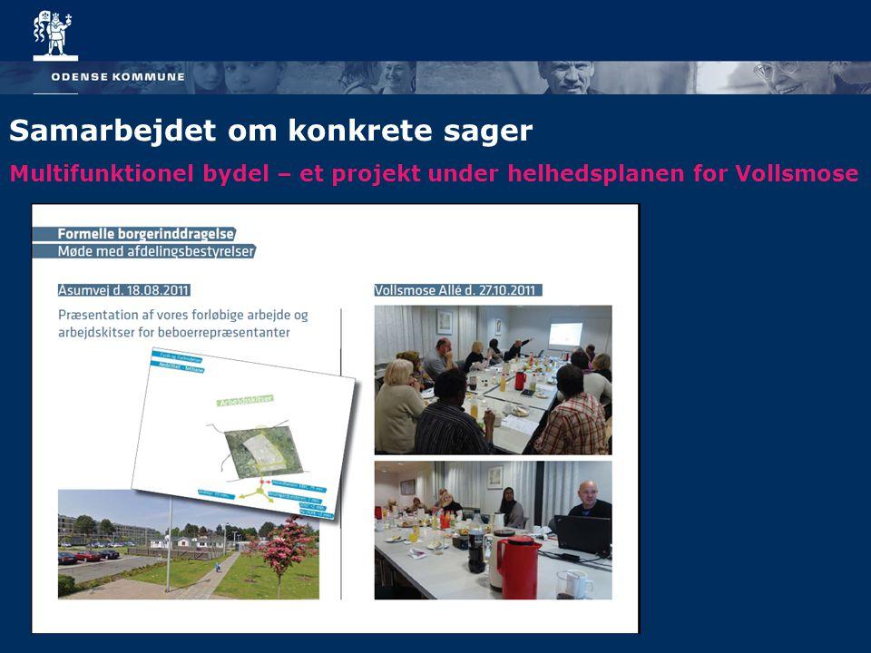 Multifunktionel bydel – et projekt under helhedsplanen for Vollsmose Samarbejdet om konkrete sager
