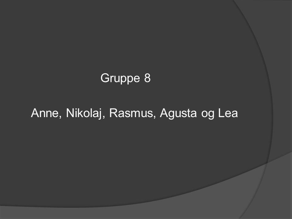 Gruppe 8 Anne, Nikolaj, Rasmus, Agusta og Lea