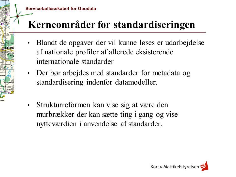Kerneområder for standardiseringen Blandt de opgaver der vil kunne løses er udarbejdelse af nationale profiler af allerede eksisterende internationale standarder Der bør arbejdes med standarder for metadata og standardisering indenfor datamodeller.