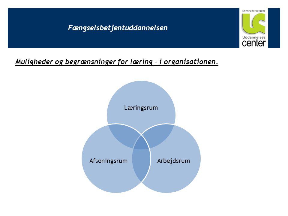 Fængselsbetjentuddannelsen Muligheder og begrænsninger for læring – i organisationen.