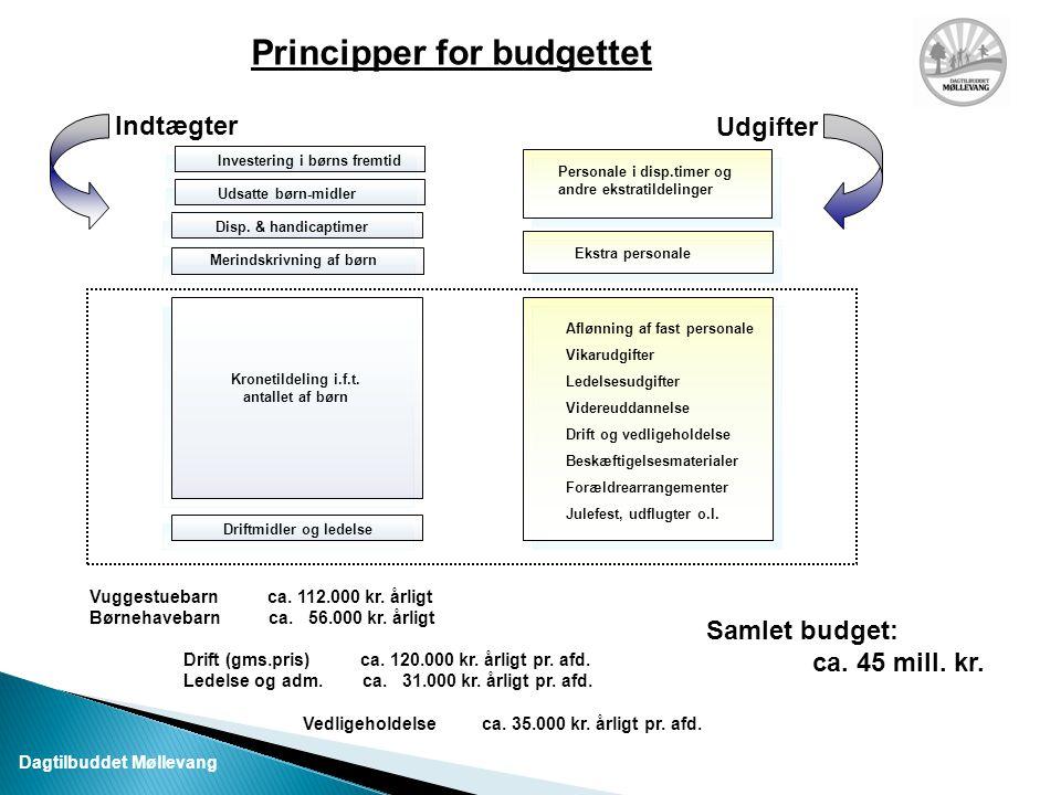 Principper for budgettet Driftmidler og ledelse Kronetildeling i.f.t.