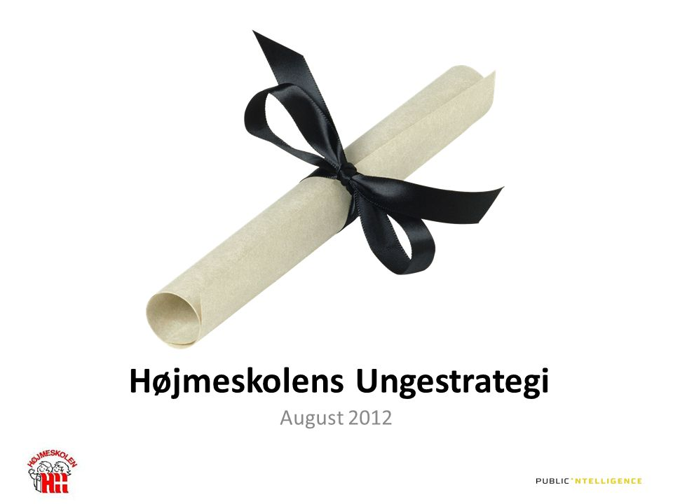 Højmeskolens Ungestrategi August 2012