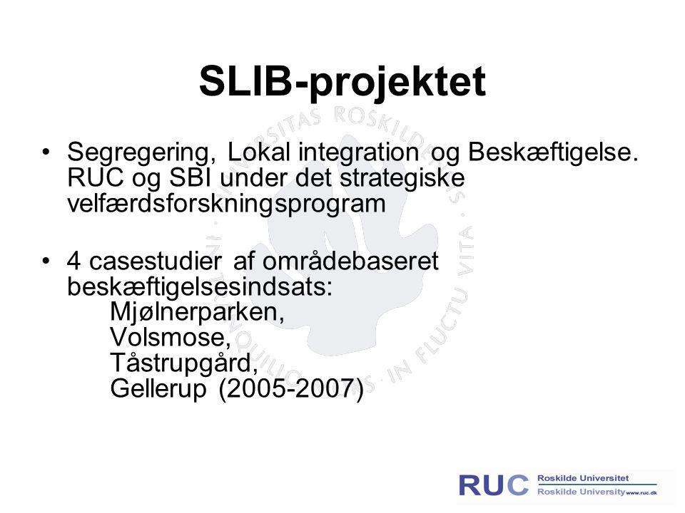 SLIB-projektet Segregering, Lokal integration og Beskæftigelse.