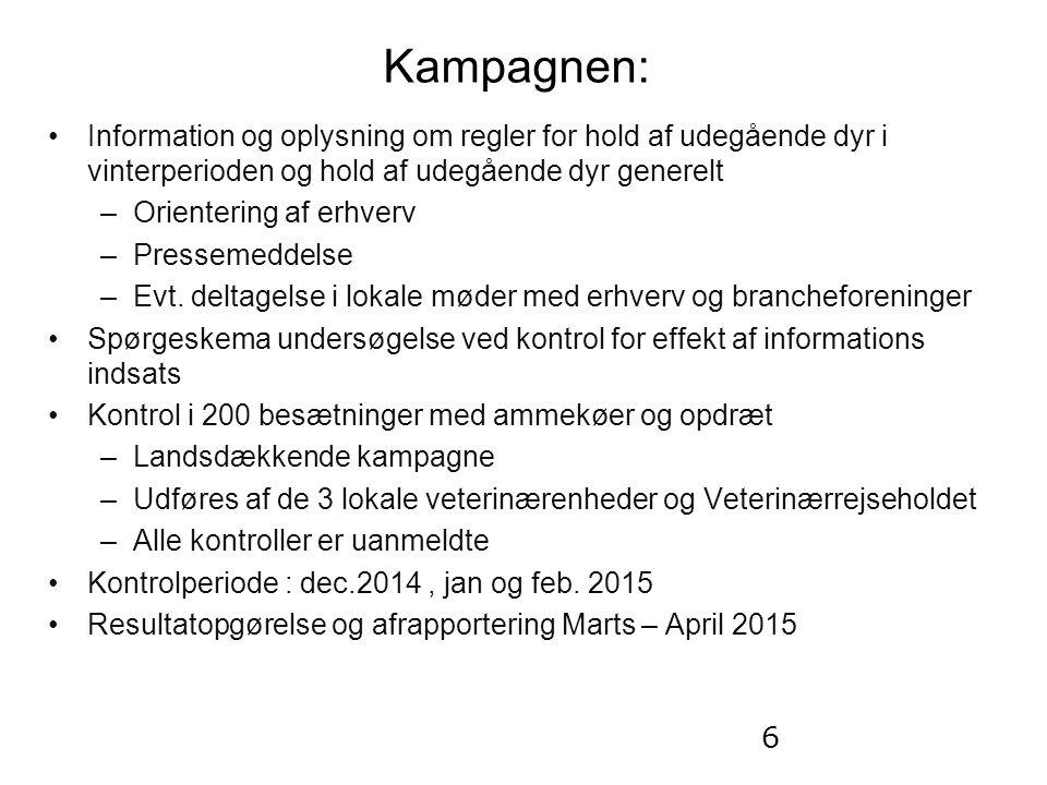 Kampagnen: Information og oplysning om regler for hold af udegående dyr i vinterperioden og hold af udegående dyr generelt –Orientering af erhverv –Pressemeddelse –Evt.