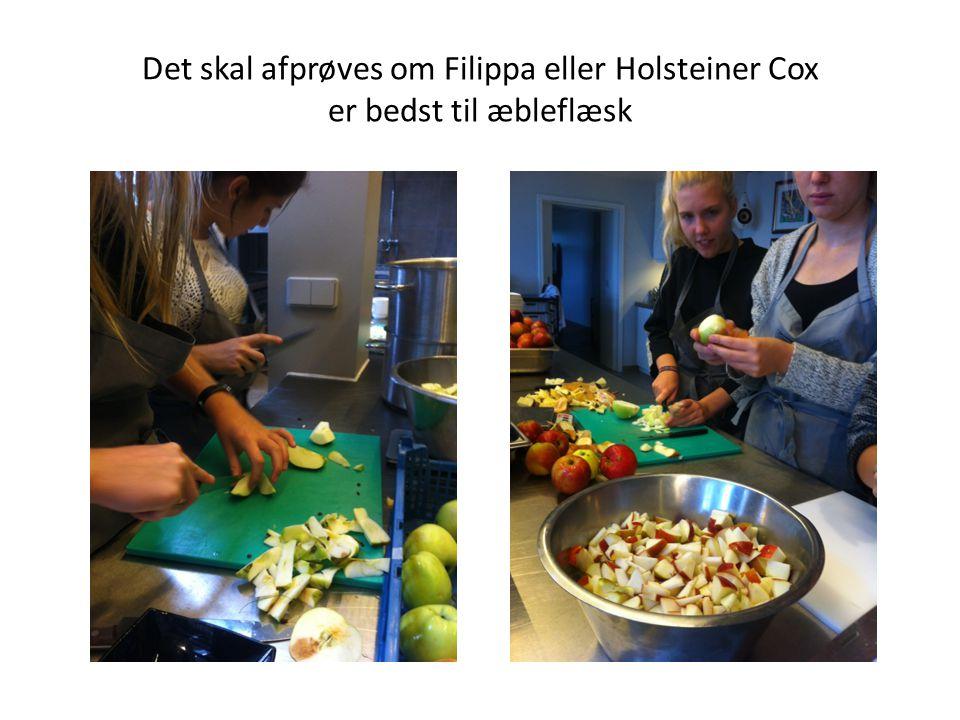 Det skal afprøves om Filippa eller Holsteiner Cox er bedst til æbleflæsk