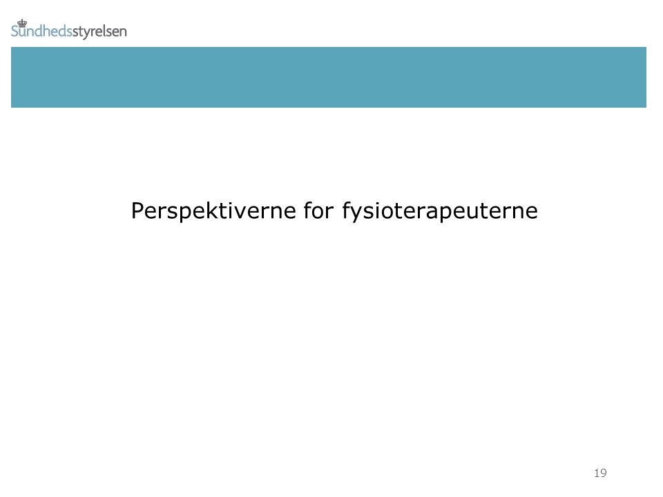Perspektiverne for fysioterapeuterne 19