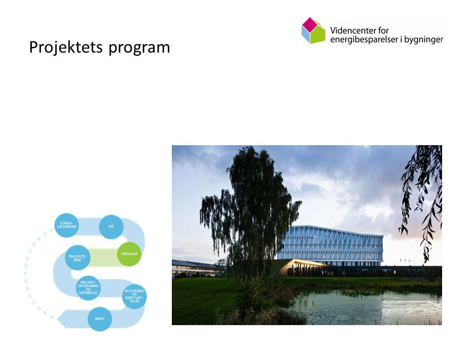 Projektets program