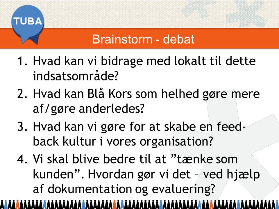 Brainstorm - debat 1.Hvad kan vi bidrage med lokalt til dette indsatsområde.