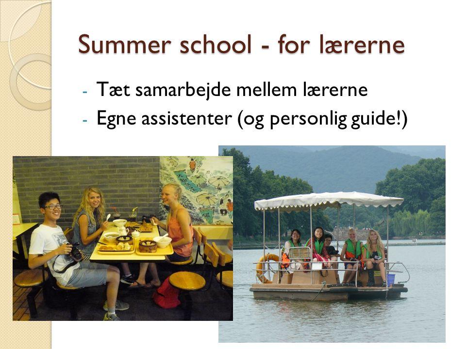 Summer school - for lærerne - Tæt samarbejde mellem lærerne - Egne assistenter (og personlig guide!)