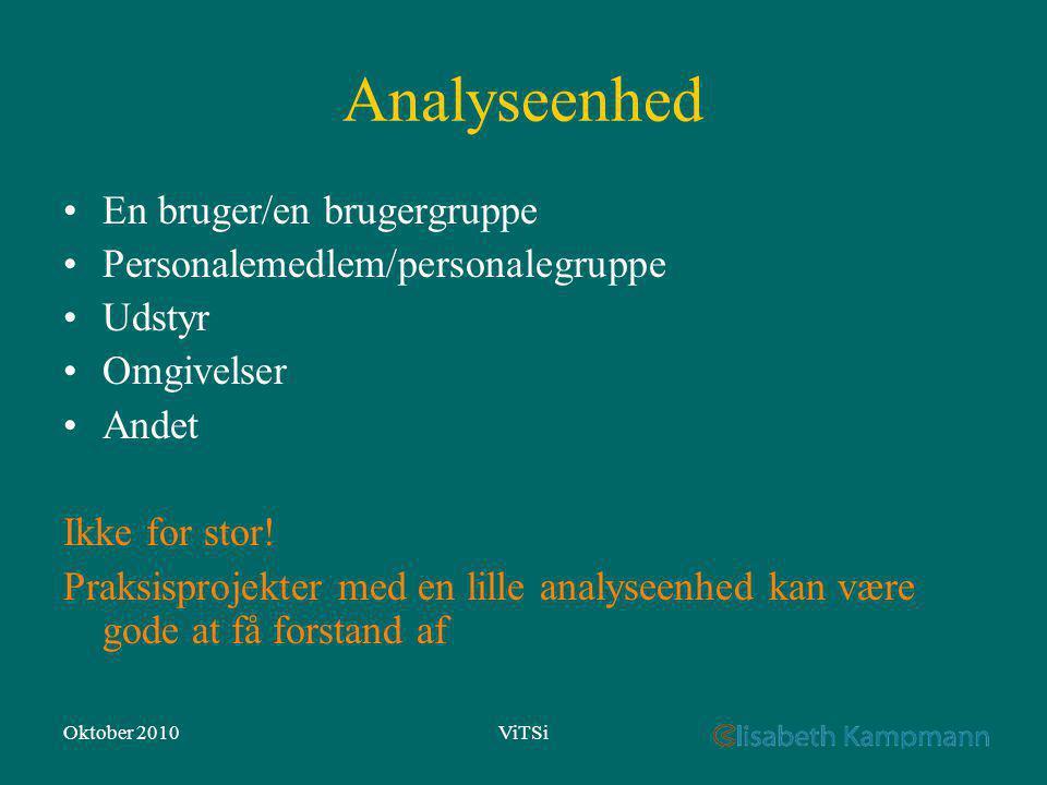 Oktober 2010ViTSi Analyseenhed En bruger/en brugergruppe Personalemedlem/personalegruppe Udstyr Omgivelser Andet Ikke for stor.