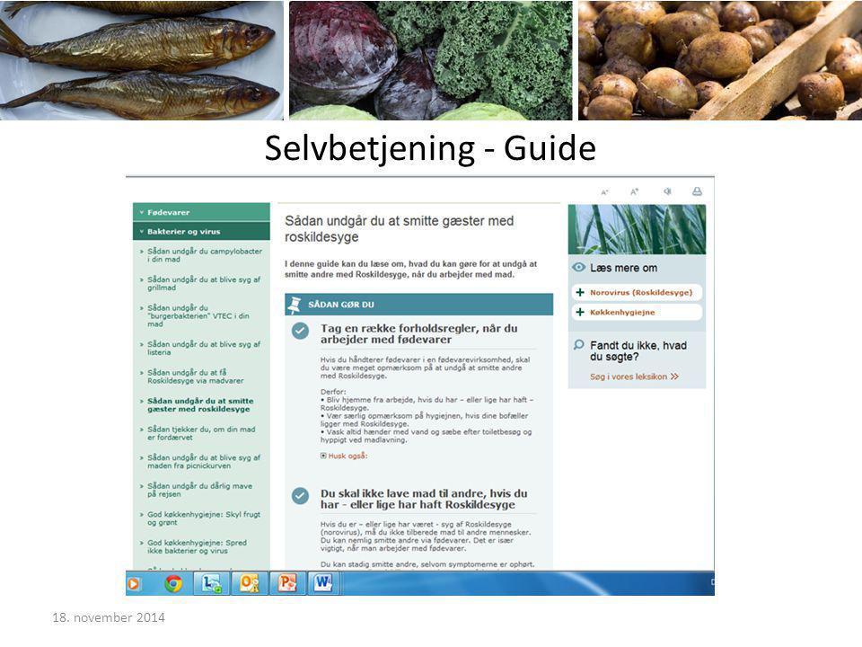 Selvbetjening - Guide 18. november 2014