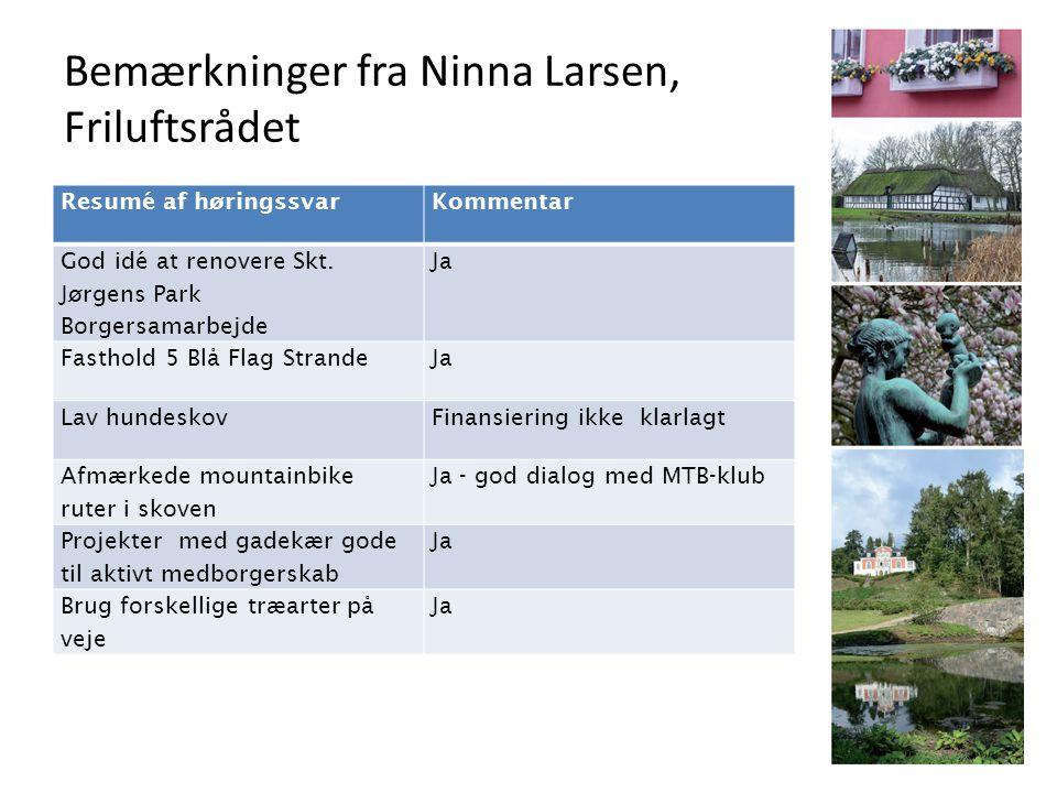 Bemærkninger fra Ninna Larsen, Friluftsrådet Resumé af høringssvarKommentar God idé at renovere Skt.