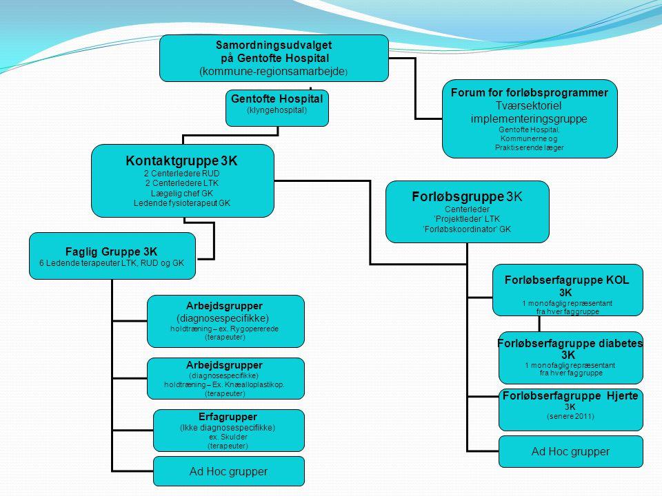 Samordningsudvalget på Gentofte Hospital (kommune-regionsamarbejde ) Gentofte Hospital (klyngehospital) Kontaktgruppe 3K 2 Centerledere RUD 2 Centerledere LTK Lægelig chef GK Ledende fysioterapeut GK Faglig Gruppe 3K 6 Ledende terapeuter LTK, RUD og GK Arbejdsgrupper (diagnosespecifikke) holdtræning – ex.