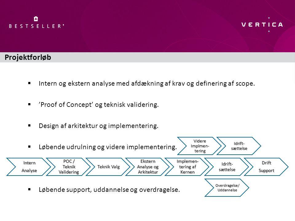  Intern og ekstern analyse med afdækning af krav og definering af scope.