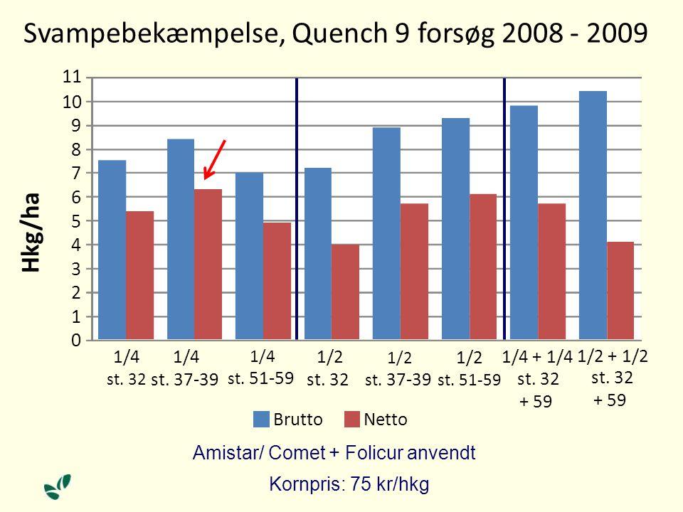 Svampebekæmpelse, Quench 9 forsøg 2008 - 2009 Amistar/ Comet + Folicur anvendt Kornpris: 75 kr/hkg 0 1 2 3 4 5 6 7 8 9 10 11 1/4 st.