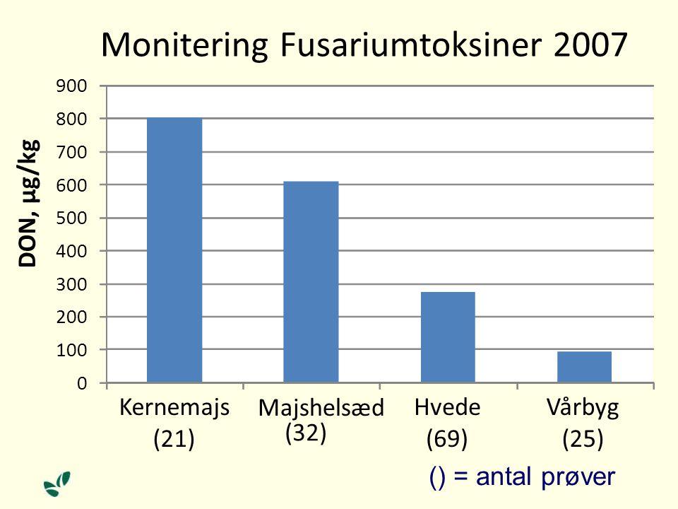 0 100 200 300 400 500 600 700 800 900 Kernemajs (21) Majshelsæd (32) Hvede (69) Vårbyg (25) DON, µg/kg Monitering Fusariumtoksiner 2007 () = antal prøver