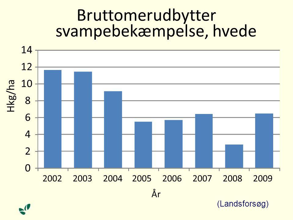 0 2 4 6 8 10 12 14 20022003200420052006200720082009 Hkg/ha År Bruttomerudbytter svampebekæmpelse, hvede (Landsforsøg)