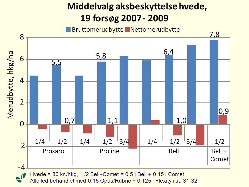 5,5 5,8 6,4 7,8 - 0,7 - 1,1 - 1,0 0,9 - 4 - 2 0 2 4 6 8 1/41/21/41/23/41/41/23/41/2 ProsaroProlineBellBell + Comet Merudbytte, hkg/ha Middelvalg aksbeskyttelse hvede, 19 forsøg 2007 - 2009 BruttomerudbytteNettomerudbytte Hvede = 80 kr./hkg, 1/2 Bell+Comet = 0,5 l Bell + 0,15 l Comet Alle led behandlet med 0,15 Opus/Rubric + 0,125 l Flexity i st.