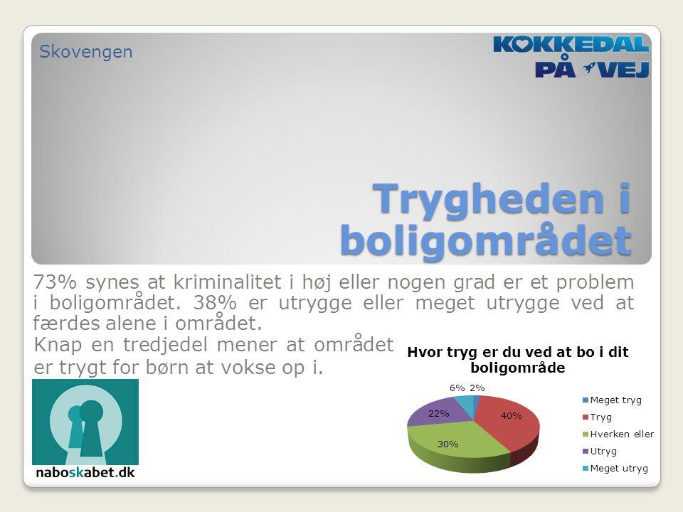 73% synes at kriminalitet i høj eller nogen grad er et problem i boligområdet.
