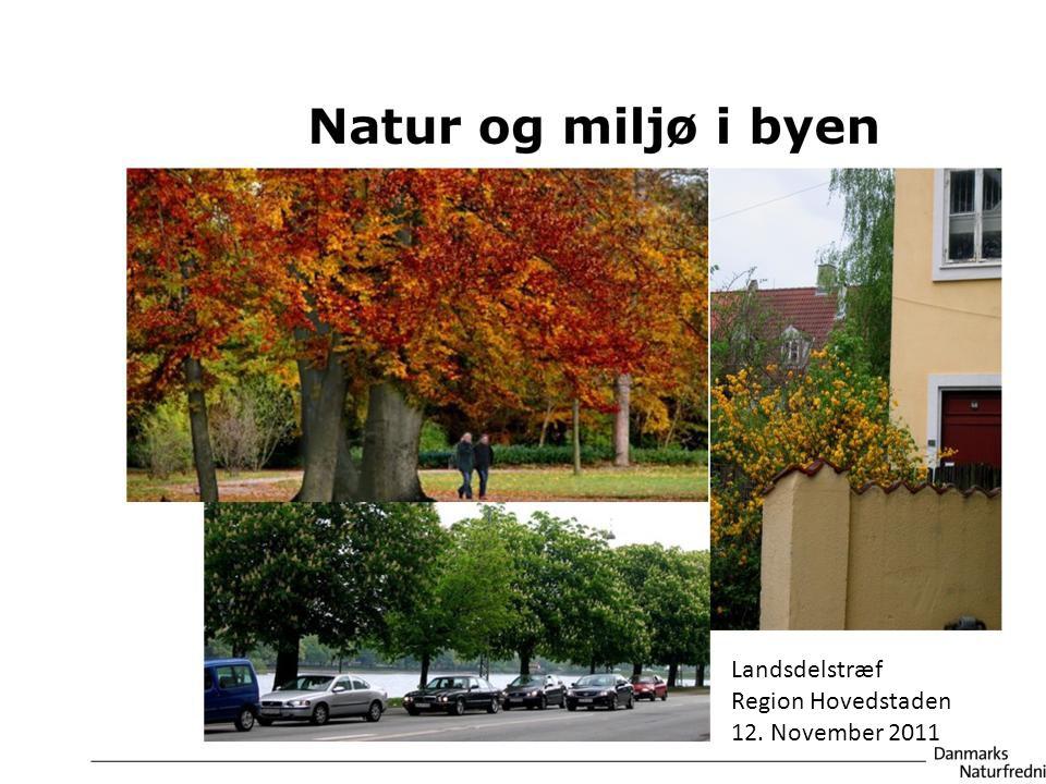 Landsdelstræf Region Hovedstaden 12. November 2011 pa@ruc.dk