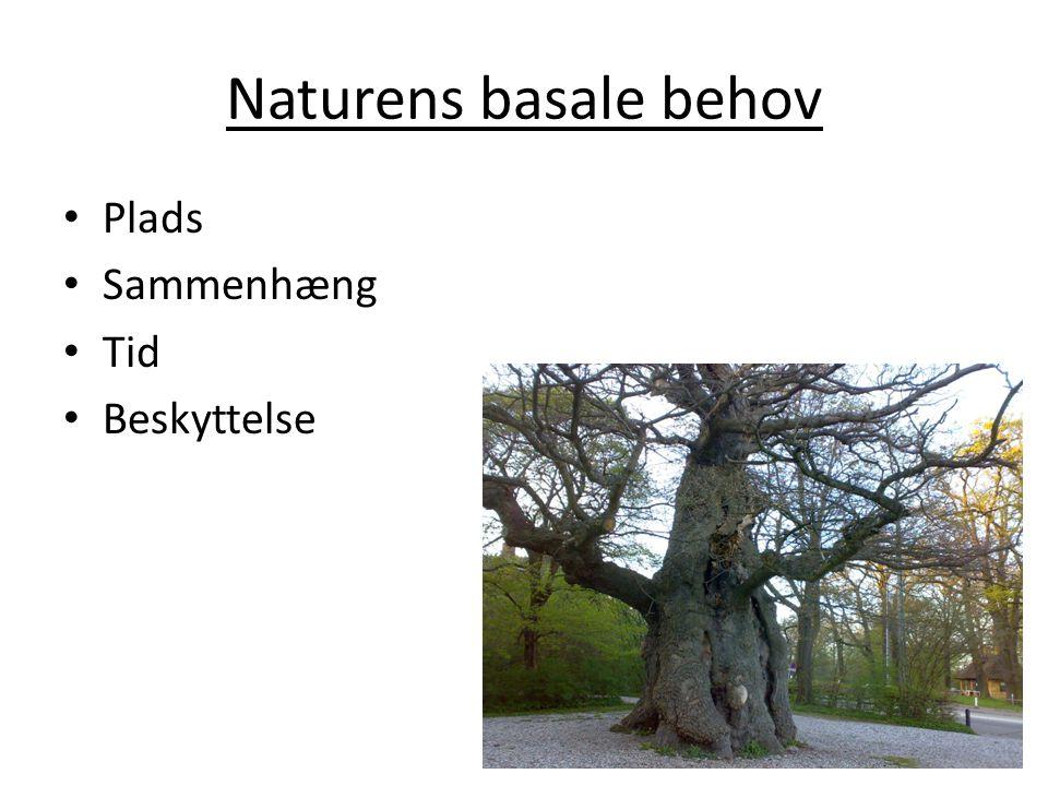 Naturens basale behov Plads Sammenhæng Tid Beskyttelse