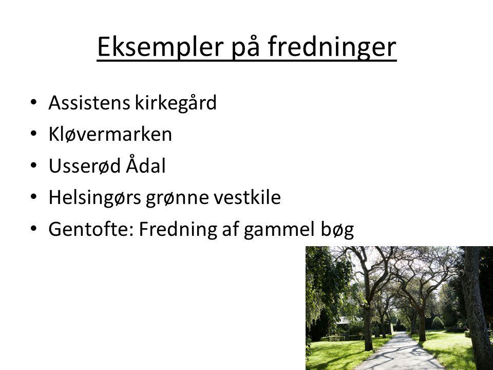Eksempler på fredninger Assistens kirkegård Kløvermarken Usserød Ådal Helsingørs grønne vestkile Gentofte: Fredning af gammel bøg
