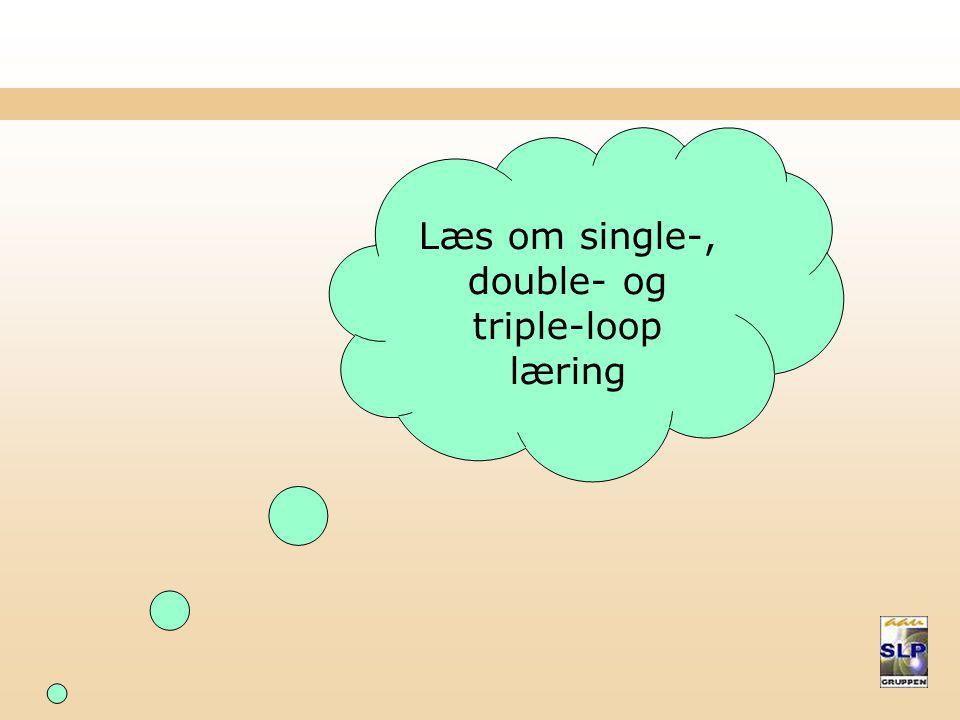Læs om single-, double- og triple-loop læring