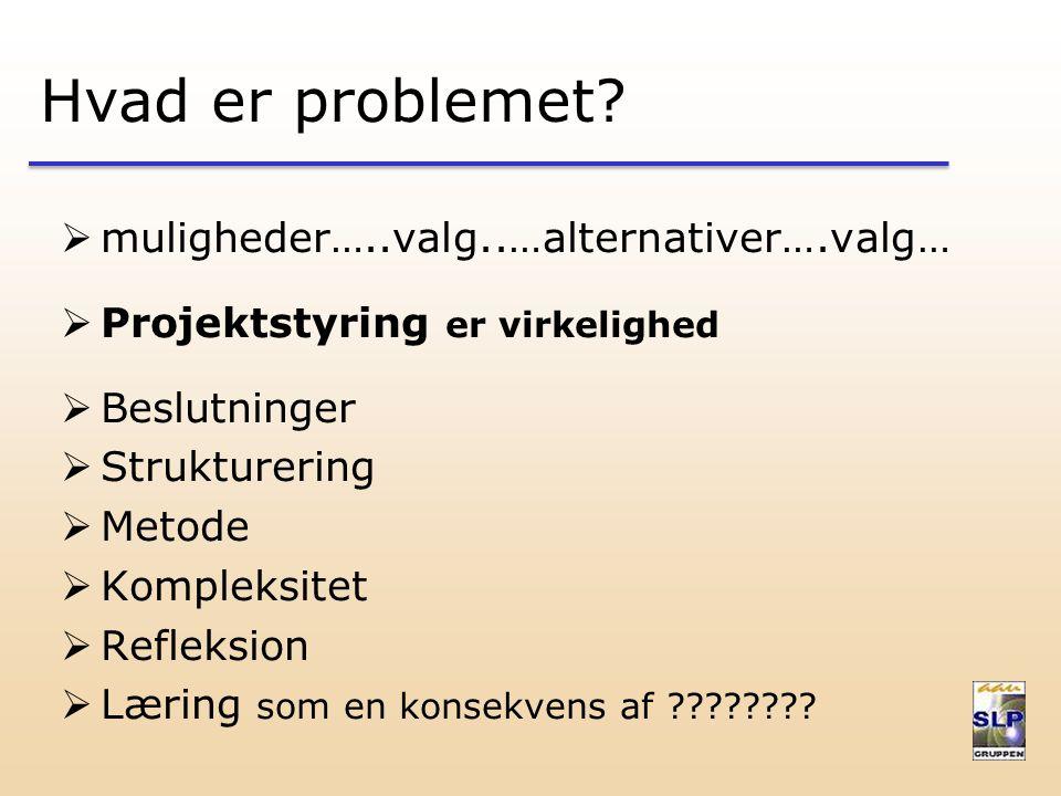 Hvad er problemet.