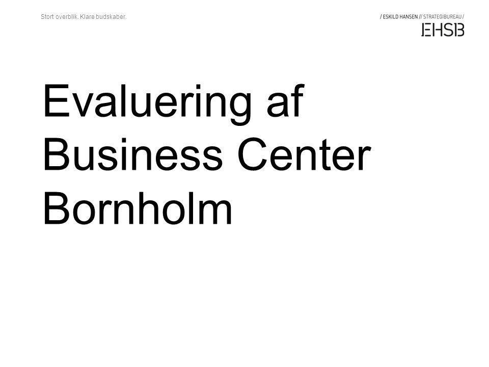 Evaluering af Business Center Bornholm Stort overblik. Klare budskaber.