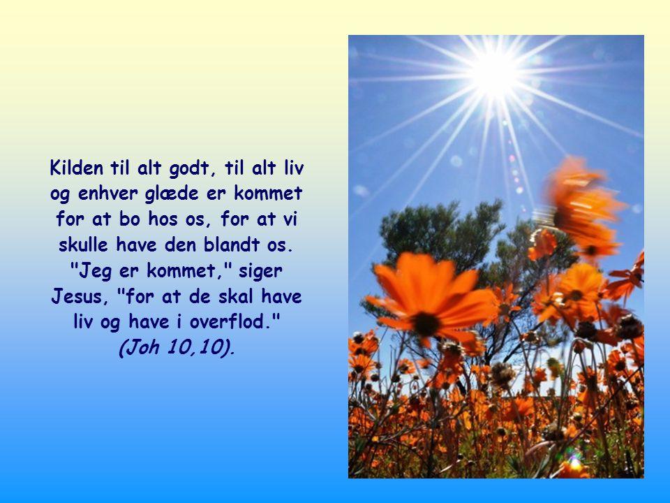 Det var ikke tilstrækkeligt for Faderens kærlighed at udtale dét Ord, gennem hvilket alt er skabt.