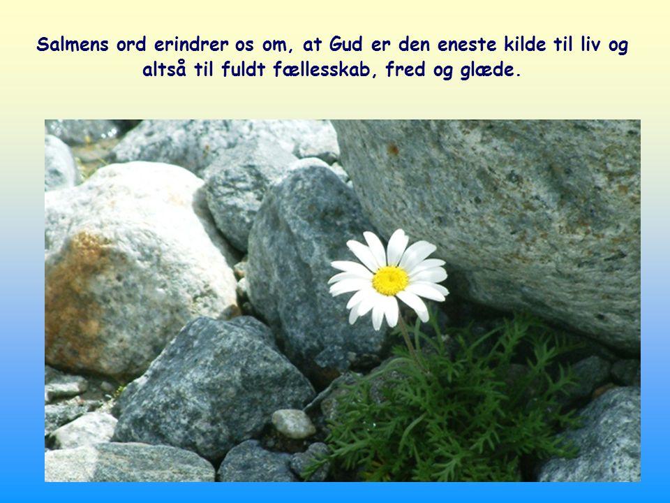 For når vi er i forening med ham, føler vi os ikke længere alene; nu er vi to: Han i mig og jeg i ham.
