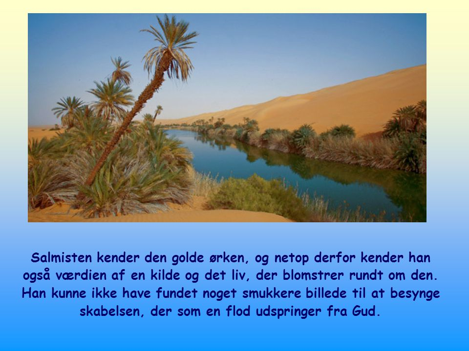 Salmisten kender den golde ørken, og netop derfor kender han også værdien af en kilde og det liv, der blomstrer rundt om den.