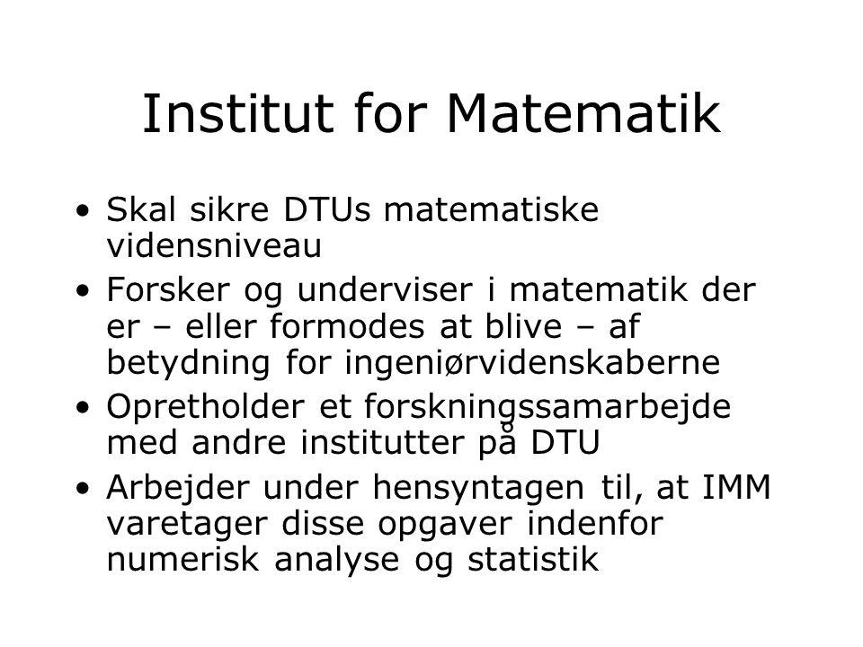 Institut for Matematik Skal sikre DTUs matematiske vidensniveau Forsker og underviser i matematik der er – eller formodes at blive – af betydning for ingeniørvidenskaberne Opretholder et forskningssamarbejde med andre institutter på DTU Arbejder under hensyntagen til, at IMM varetager disse opgaver indenfor numerisk analyse og statistik