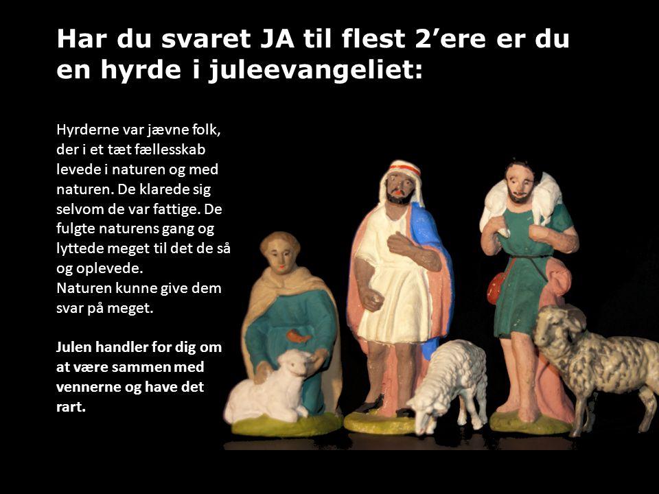 Har du svaret JA til flest 3'ere er du Josef eller Maria i juleevangeliet: For Josef og Maria handlede julen om et barn der var født og deres lille nye familie.