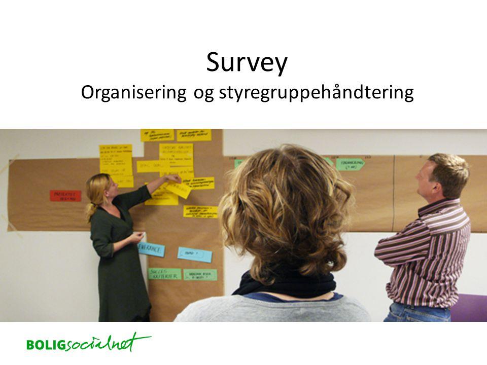 Survey Organisering og styregruppehåndtering