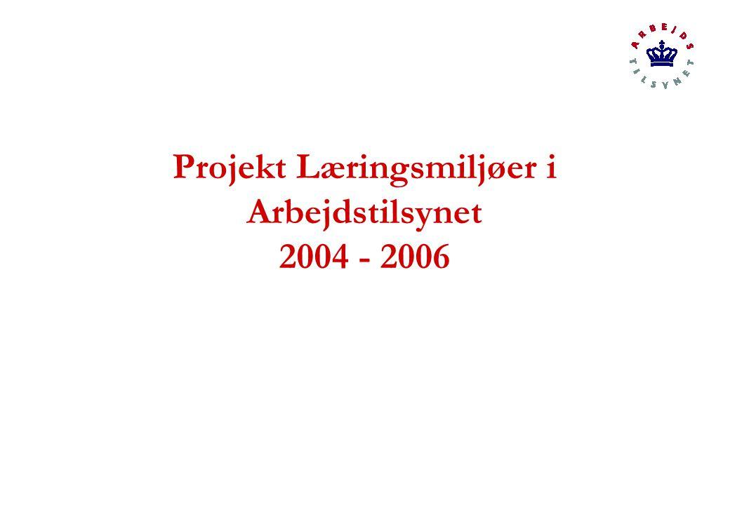 Projekt Læringsmiljøer i Arbejdstilsynet 2004 - 2006