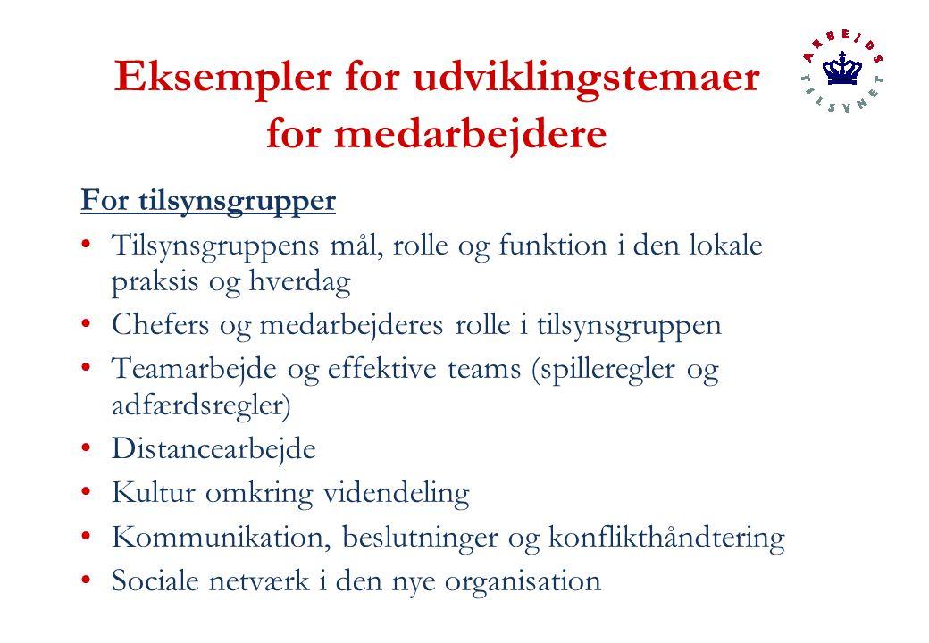 Eksempler for udviklingstemaer for medarbejdere For tilsynsgrupper Tilsynsgruppens mål, rolle og funktion i den lokale praksis og hverdag Chefers og medarbejderes rolle i tilsynsgruppen Teamarbejde og effektive teams (spilleregler og adfærdsregler) Distancearbejde Kultur omkring videndeling Kommunikation, beslutninger og konflikthåndtering Sociale netværk i den nye organisation