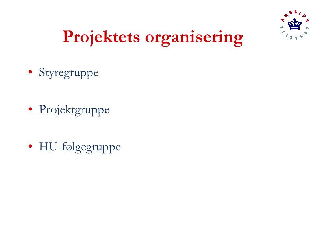Projektets organisering Styregruppe Projektgruppe HU-følgegruppe