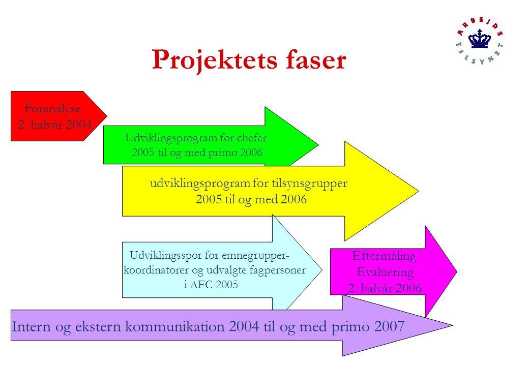 Projektets faser Foranalyse 2.