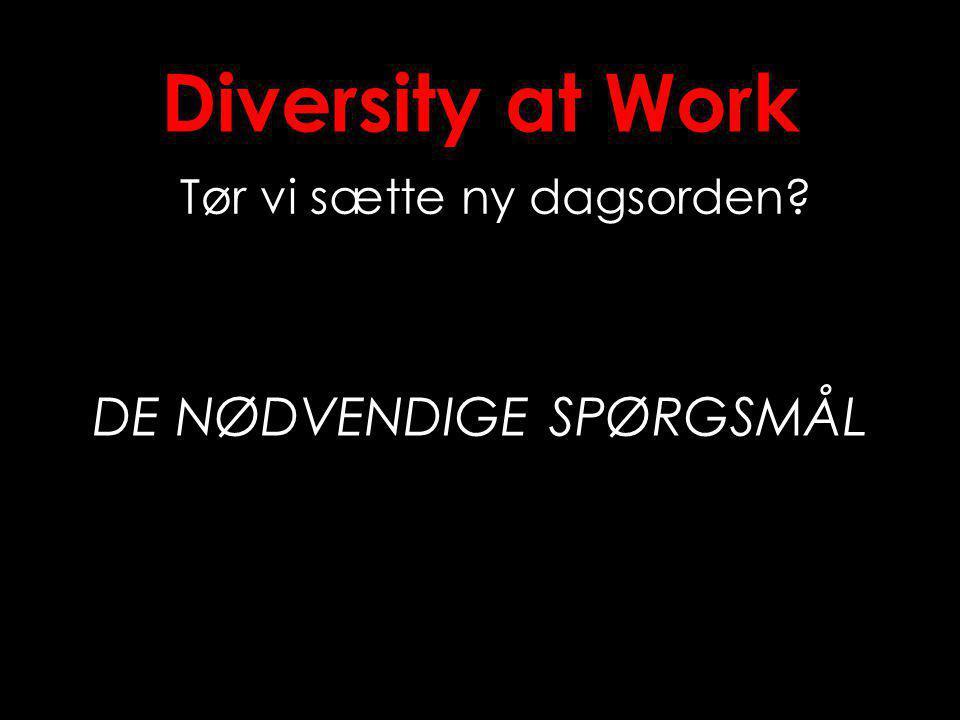 Diversity at Work Tør vi sætte ny dagsorden DE NØDVENDIGE SPØRGSMÅL