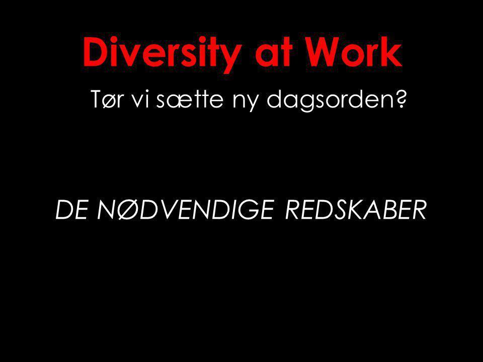 Diversity at Work Tør vi sætte ny dagsorden DE NØDVENDIGE REDSKABER