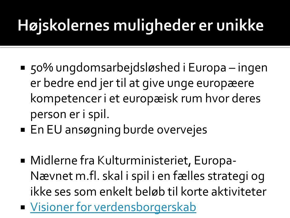  50% ungdomsarbejdsløshed i Europa – ingen er bedre end jer til at give unge europæere kompetencer i et europæisk rum hvor deres person er i spil.
