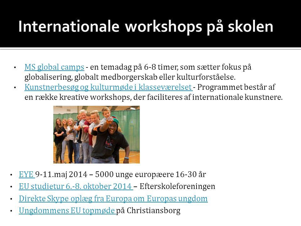 MS global camps - en temadag på 6-8 timer, som sætter fokus på globalisering, globalt medborgerskab eller kulturforståelse.